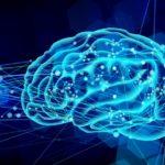 覚える脳の仕組み